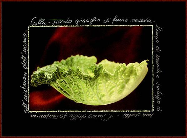 Fotografia su tela - Cinzia Mauri - Culla
